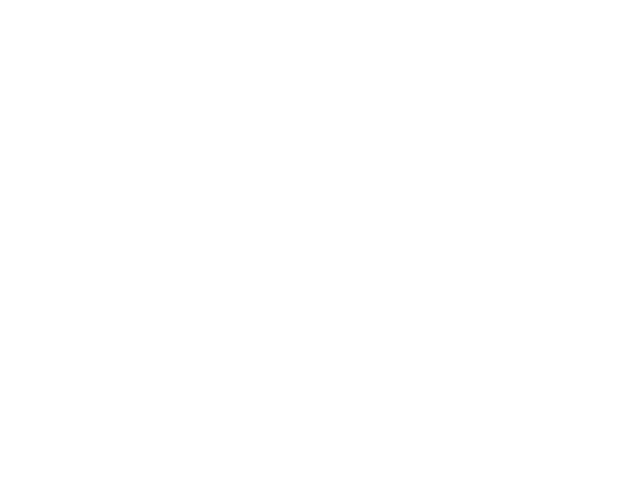 Grupo Aduanal Zaragoza S.C.